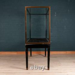 EARLY 20thC EDWARDIAN MUSEUM DISPLAY CABINET
